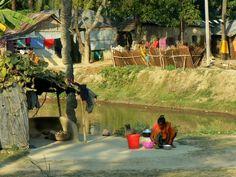 Bangladesh http://www.dhakatimes24.com/index.php