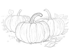 Three Pumpkins coloring page from Pumpkins category. Select from 31983 printable crafts of cartoons, nature, animals, Bible and many more. Pumpkin Drawing, Pumpkin Art, Pumpkin Colors, Pumpkin Painting, Fall Coloring Sheets, Pumpkin Coloring Pages, Coloring Books, Colouring, Colored Pencil Tutorial