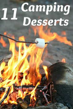 11 amazing dessert #recipes that you can make when #camping! Can't wait to make the skillet brownies!