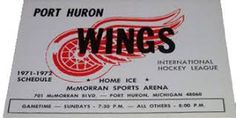 Image result for port huron wings hockey 1971 Port Huron, Hockey, Wings, Image, Field Hockey, Feathers, Feather, Ali, Ice Hockey