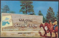 Show Low, AZ Planning and zoning commissioner 6 years and city council 4 years.