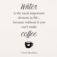 Quote: Water is the most important element in life...because without it you can't make coffee. - Carrie Bradshaw