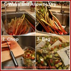 Picture Collage Showing How to Freeze Rhubarb Without Sugar Added