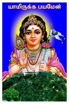 Free Download God Muruga Wallpapers மரகன God Murugan In