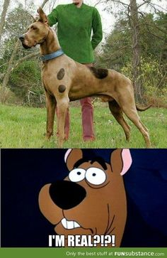 Scooby Doo is r       Scooby really does exist! Loved this cartoon when I was little.