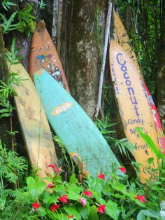 true 'old' Hawaii, Nahiku, Maui