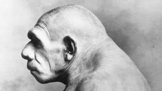 Early Humans Mated With Inbred Neanderthals — at a Cost. Reproduction of Neanderthal Man in Chicago Field Museum Bettmann / Contributor Giant Skeleton, Ugly Animals, Blobfish, Field Museum, Early Humans, Archaeology News, Human Evolution, Photographs Of People, Guys Be Like