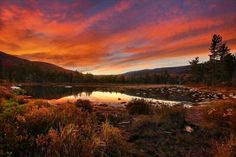Lily Pond, White Mountains of New Hampshire - Jeff Burcher Photography