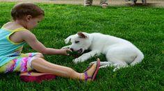 Κορίτσι με τεχνητά μέλη φίλη με σκύλο χωρίς πόδι