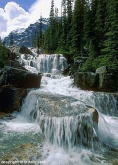 At the Giant Steps waterfall in Banff National Park, Canada. Beautiful Waterfalls, Beautiful Landscapes, Banff National Park, National Parks, Places To Travel, Places To See, Places Around The World, Around The Worlds, Beautiful World