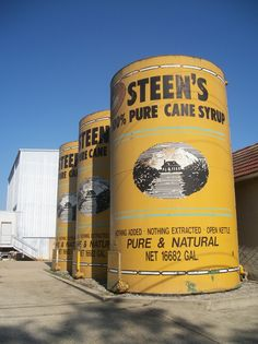 Yummy..  Google Image Result for http://dixiedining.files.wordpress.com/2010/11/cane-country-steens.jpg