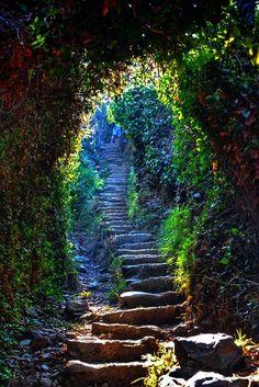 Trails, Cinque Terre, Italy,