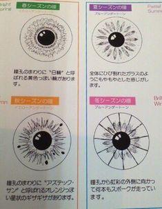 「パーソナルカラーは瞳の柄で分かる」本当に瞳にその柄がある。私はイエベ春、彼はブルベ夏