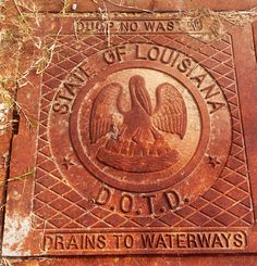 New Orleans drain cover  --Art on the Ground