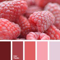 brown color, burgundy color, color combination for spring, color palette for spring, colors of spring 2016, dark pink color, gentle shades of cherry, light pink color