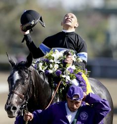 Jockey Mike Smith looks up after Mizdirection won the 2013 Breeders' Cup Turf Sprint horse race at Santa Anita Park. Photo courtesy of AP Photo/Gregory Bull