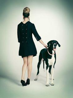 dog fashion shoot #caninecouture #dogs #fashion
