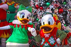 Donald and Daisy Welcome Christmas