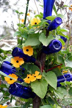 Think of all the different color vines OR climbing roses you could add to something like this!
