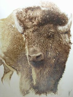 Buffalo!! huile/bois  150x120 www.georges-rossi.com