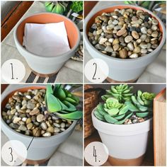 DIY succulent planter, that you can't kill! they obvious don't know me. I want to try this for the house.