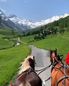 Beautiful carriage ride in the St. Moritz, Switzerland 🐴 🏔 Tag with whom you would like to do that 😍? Video by Vacation Places, Vacation Trips, Tourist Places, Nature Photography, Travel Photography, Nature Sauvage, St Moritz, Destination Voyage, Beautiful Places To Travel