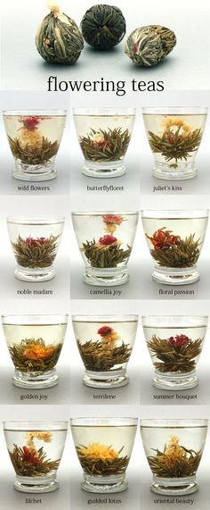 Flowering Teas--love these. They just taste like green tea, but look great in a glass tea pot! And it's fun to watch them open!