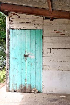 This aqua battered door was spotted in Kariba, Zimbabwe... photographed by Jane Walker