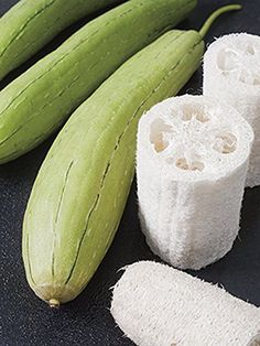 Luffa gourds are related to the cucumber plant, and are just as simple to grow in your typical summer garden. They are fantastic as both sponges and body..