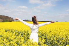 Girl in the Lens | yellow fields
