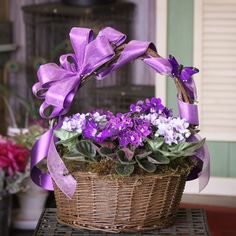 A basket filled with purple, African Violets makes an adorable gift.