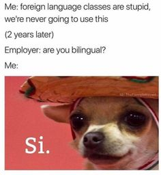 Si. << Technically, it's sí, as in yes. The other si just means 'if'.