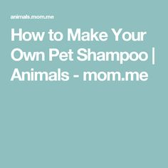 How to Make Your Own Pet Shampoo | Animals - mom.me