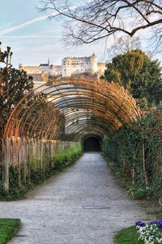 Mirrabell gardens and Hohensalzburg fortress Salzburg Austria, Sidewalk, Gardens, Side Walkway, Outdoor Gardens, Walkway, Walkways, Garden, House Gardens