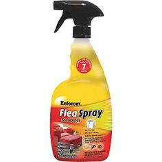 Enforcer Flea  Tick Killer Spray For Homes  1 Each >>> This is an Amazon Affiliate link. Check out the image by visiting the link.