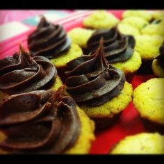 Paleo Hazelnut Mini Muffins with Paleo Chocolate Frosting from Paleo Baking Company