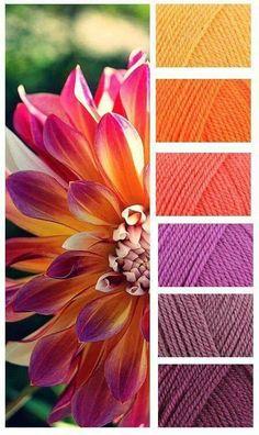 Color inspiration for a warm quilt in yellows, oranges and purples. Colour names are: Sunshine – Jaffa – Shrimp – Magenta – Grape – Plum! Yarn Color Combinations, Colour Schemes, Color Patterns, Colour Pallette, Color Palate, Design Seeds, Yarn Colors, Colours, Room Colors