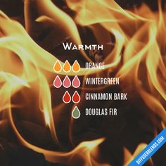 Warmth - Essential Oil Diffuser Blend