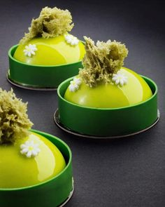Pistachio petit gateaux for my class at Small Desserts, Gourmet Desserts, Fancy Desserts, Delicious Desserts, Plated Desserts, Pistacia Vera, Patisserie Fine, Individual Cakes, Beautiful Desserts