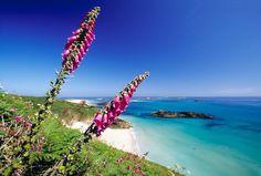Belvoir-Beach Guernsey