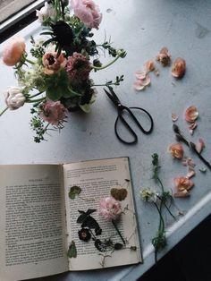 Blog — A FINE MEDLEY