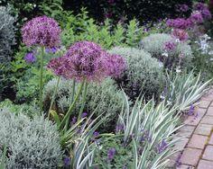 95 Beautiful Front Yard Cottage Garden Landscaping Ideas - Image 52 of 95 Garden Types, Diy Garden, Garden Cottage, Fairy Gardening, Herb Garden, Small Front Gardens, Back Gardens, Plants For Small Gardens, Beautiful Flowers Garden