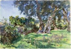 John Singer Sargent (1856 — 1925, USA) Olive Trees, Corfu. 1909 watercolor and gouache and blue ink on cream wove paper. 35.6 x 50.8 cm.