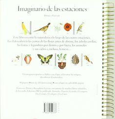 Imaginario de las estaciones (Libro Regalo 0-6 Años): Amazon.es: Francesco Pittau, Bernadette Gervais, Teresa Tellechea: Libros