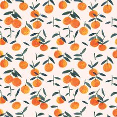 clementine peach wallpaper sample.jpg