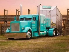 Beautiful cattle truck