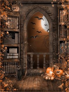 vinyl backdrops for photography Picture - More Detailed Picture about Halloween bookshelBackground Night backdrops Vinyl backdrops for photography Fond studio photo vinyle Atmosphere layout Picture in Background from SJOLOON Background Factory Store Halloween Kunst, Casa Halloween, Halloween Backdrop, Halloween Artwork, Halloween Prints, Halloween Pictures, Halloween Wallpaper, Holidays Halloween, Halloween Themes