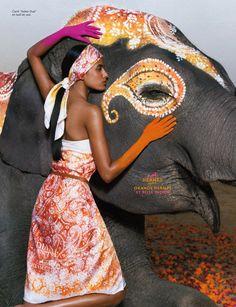 Hermes Indian Dust With Lakshmi Menon Colourfully Cute! Indian Elephant, Elephant Love, Elephant Art, Elephant Habitat, Elephant India, Fashion Moda, Love Fashion, High Fashion, Fashion Pics
