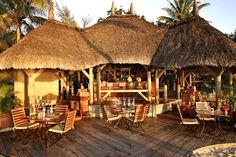 The beach bar which served the best rock lobster ever! Seychelles, Maldives, Sri Lanka, Mauritius Honeymoon, Rock Lobster, Big Draw, Destinations, Maurice, Beach Bars