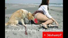 Lucu dikit Saru, Gadis Cantik Diperkosa Disetubuhi Anjing Cabul Mesum. *...